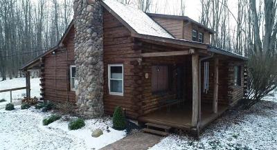 Wilson NY Single Family Home A-Active: $239,900