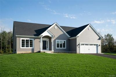 Orchard Park Single Family Home A-Active: 18 Hearthstone
