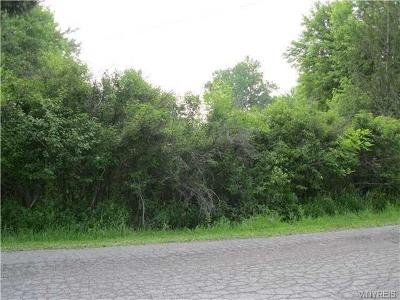 Erie County Residential Lots & Land A-Active: 840 Wilson Street