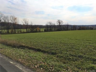 Erie County Residential Lots & Land A-Active: 1245 Emery - Lot 5 Road