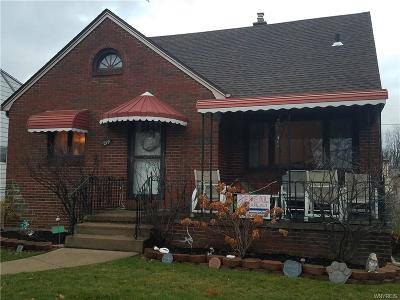 Erie County Single Family Home A-Active: 219 Eastland Parkway
