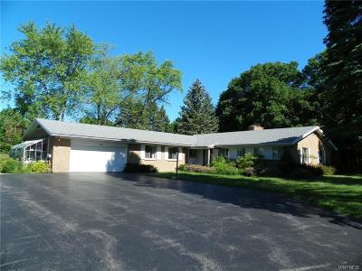Erie County Single Family Home A-Active: 145 Reiter Road