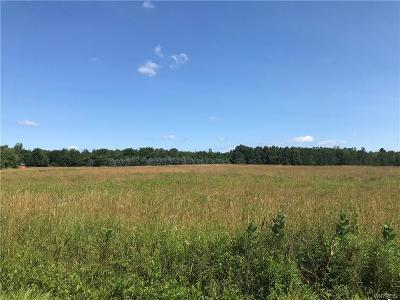 Chautauqua County Residential Lots & Land A-Active: 0-1 Kuhrt Road North