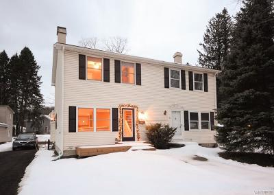 Ellicottville Single Family Home U-Under Contract: 18 Mechanic Street