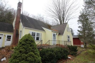 Lewiston NY Single Family Home A-Active: $124,900