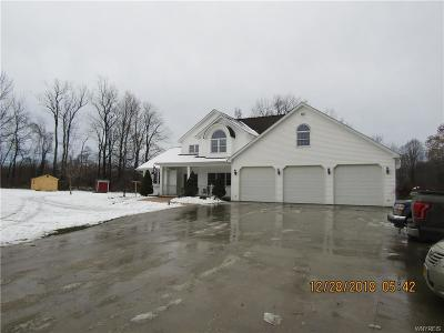 Erie County Single Family Home A-Active: 1981 Cain Road