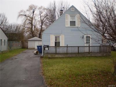 Amherst Single Family Home A-Active: 33 Buckeye Road