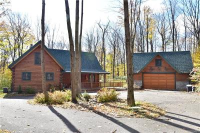 Ellicottville Single Family Home A-Active: 6436 Watson Hill Lane