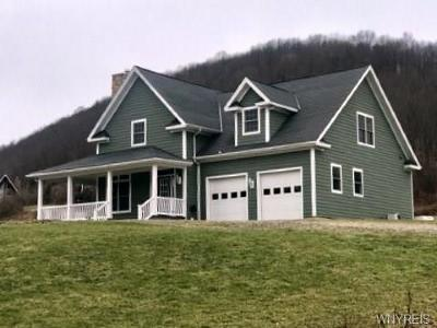 Ellicottville Single Family Home A-Active: 6652 Maples Road