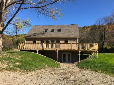 Ellicottville Single Family Home A-Active: 6734 Maples Road