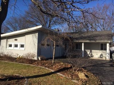 Lewiston Single Family Home P-Pending Sale: 541 Fairway Drive