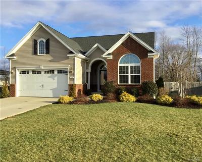 Grand Island Single Family Home A-Active: 375 Waterford Park