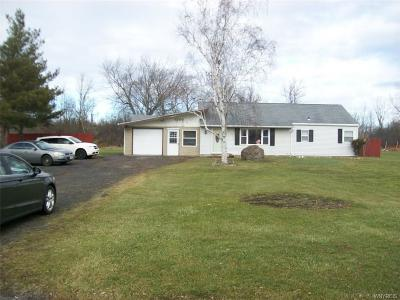 Niagara Falls Single Family Home A-Active: 5200 Grauer Road