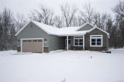 Orleans County, Monroe County, Niagara County, Erie County Single Family Home A-Active: 12787 Dorsch Road