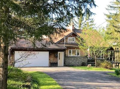 Cattaraugus County Single Family Home For Sale: 4849 Block Road