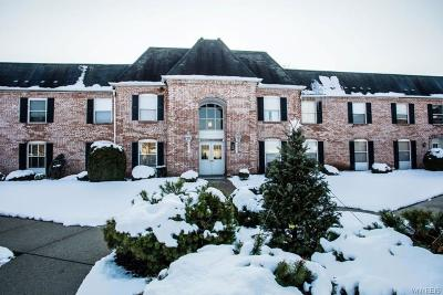 Amherst Condo/Townhouse A-Active: 4545 Chestnut Ridge Road #113A