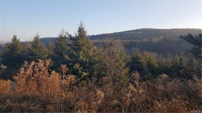 Allegany County, Cattaraugus County Residential Lots & Land A-Active: 7487 North Branch Road