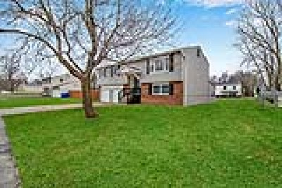 West Seneca Single Family Home A-Active: 221 Fawn Trail