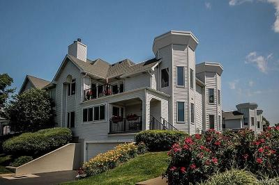 Erie County Condo/Townhouse A-Active: 265 Lakefront Boulevard