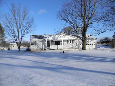 Single Family Home A-Active: 6737 Junction Road
