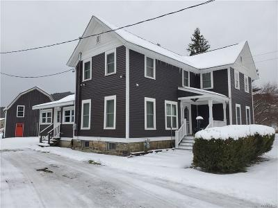 Ellicottville Single Family Home A-Active: 6448 Nys Route 242 East