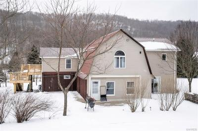 Ellicottville Single Family Home A-Active: 6190 Sommerville Valley Road