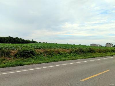 Genesee County Residential Lots & Land A-Active: V/L Cohocton Road