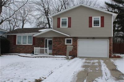 Amherst NY Single Family Home A-Active: $239,900