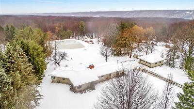 Erie County Single Family Home A-Active: 2252 Lewis Road