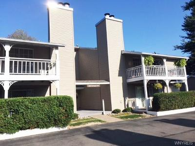 Amherst Condo/Townhouse Active Under Contract: 1260 Youngs Road #A