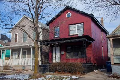 Buffalo Single Family Home A-Active: 249 Whitney Place