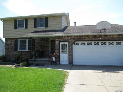 North Tonawanda Single Family Home A-Active: 253 Selkirk Drive