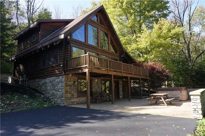 Ellicottville Single Family Home A-Active: 7313 Bibbs Road