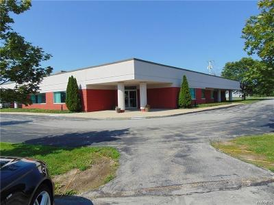 Orchard Park NY Commercial A-Active: $1,100,000