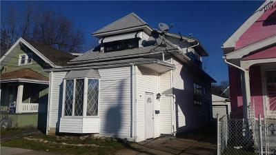 Buffalo Single Family Home A-Active: 41 Richlawn Avenue