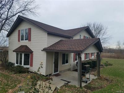 Niagara County Single Family Home A-Active: 4013 Lower Mountain Road
