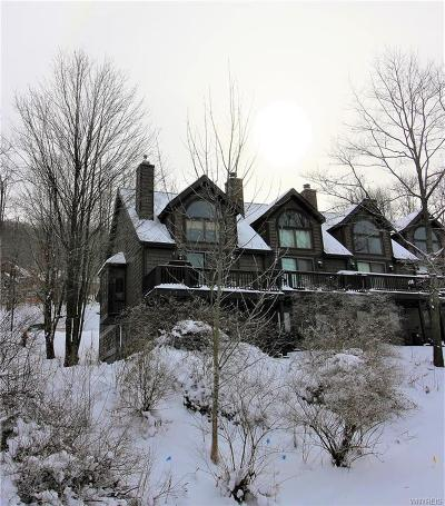 Ellicottville Condo/Townhouse A-Active: 46 Sunset Rd - The Woods Road