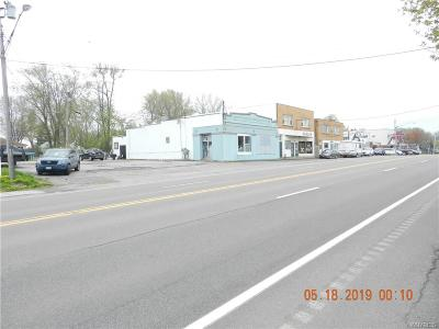 Hamburg NY Commercial A-Active: $100,000