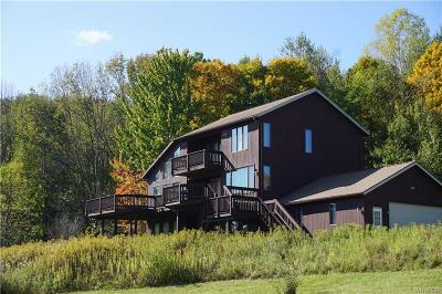 Ellicottville Single Family Home A-Active: 7232 Bibbs Road