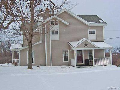 Genesee County Single Family Home A-Active: 7556 Bank Street Road