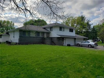 Rochester Single Family Home A-Active: 625 Elmgrove Road