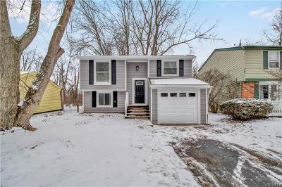 Erie County Single Family Home A-Active: 344 Denrose Drive