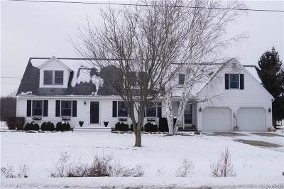 Erie County Single Family Home A-Active: 5670 Davison Rd