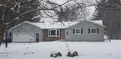Genesee County Single Family Home A-Active: 6755 Junction Road