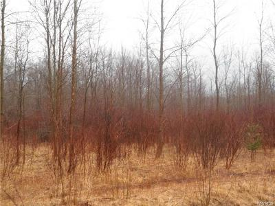 Angola Residential Lots & Land C-Continue Show: Pontiac Road