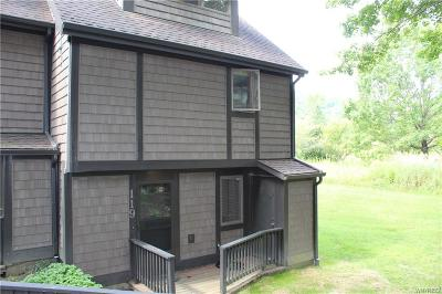 Ellicottville Condo/Townhouse A-Active: 119 Holiview Rd-The Woods