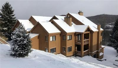 Ellicottville Condo/Townhouse For Sale: A202 Snowpine Village