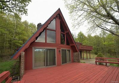 Ellicottville Single Family Home A-Active: 7026 Ridge Road