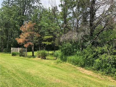 Chautauqua County Residential Lots & Land C-Continue Show: 2528 Whitaker Road North