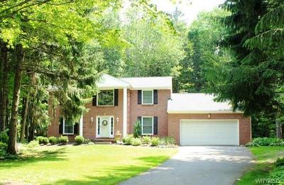 Erie County Single Family Home A-Active: 101 Tanglewood Drive West